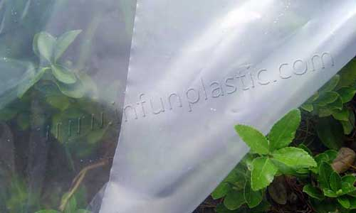 Anti Drip Film/non-dipping greenhouse film